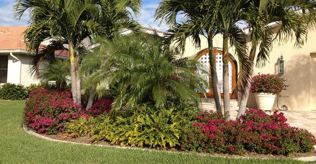 landscaping cape coral